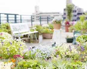 A woman enjoying gardening on the rooftop